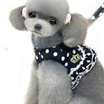 [B01E6JVZLS] (Kiitos) ワンちゃん の 水玉 フリル の ソフト ハーネス & リード セット 小型 犬 小さめ 中型 犬 胴輪 ワンタッチ ベスト タイプ ( ブラック L )