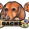 [B009325H2W] 犬ステッカー ダックスフンド15 マグネット