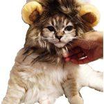 [B00SAERUGU] 【PacoShop919】 猫が ライオンに大変身 ウイッグ 可愛い 愛犬 愛猫 ちゃん P304