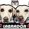 [B00932802G] 犬ステッカー ラブラドール2 シール