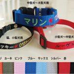 [B00DI7FLJM] 刺繍ネーム首輪(迷子札首輪) Sサイズ 名前入り 超小型犬 小型犬 猫  ピンク