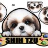 [B009328XIC] 犬ステッカー シーズー50 シール